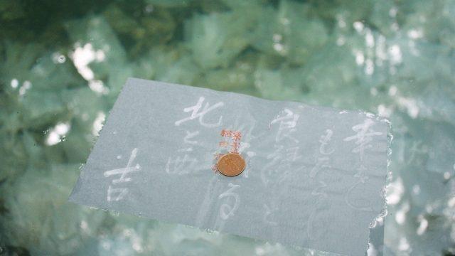 八重垣神社のイモリは鏡池の占いに効果が?いつ沈むのがいいかも紹介!